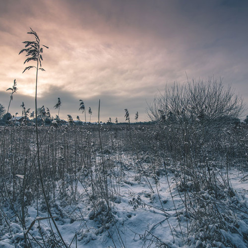 Kennet and Avon Canal Winter Landscape Photography